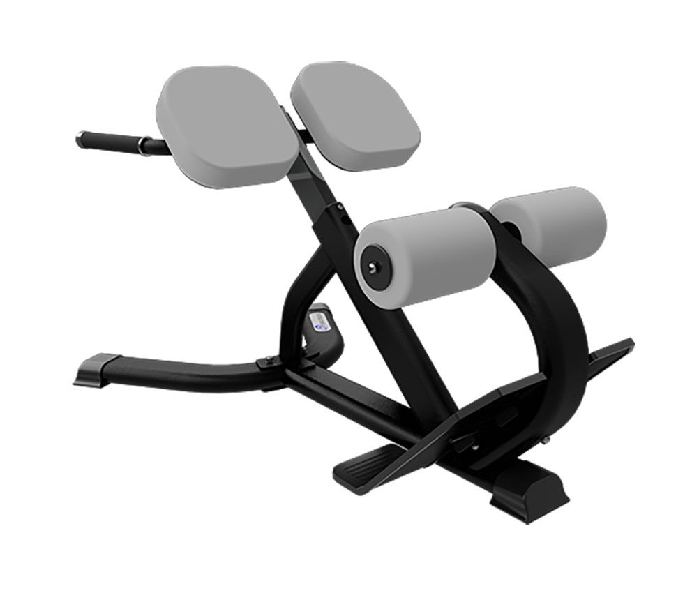Nautilus-Benches-Racks-45-Deg-Back-Extension